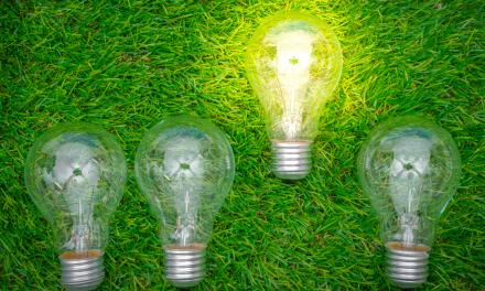 Forme di incentivazione energia elettrica: I Certificati Verdi